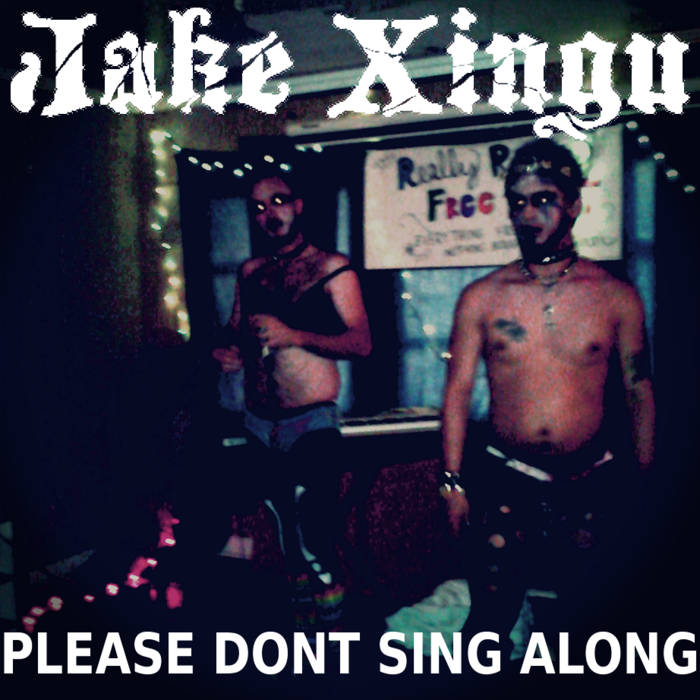 Please Don't Sing Along cover art
