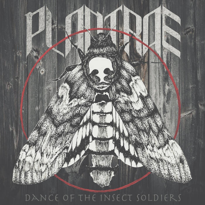 Dance Of The Insect Soldiers cover art