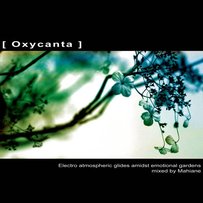 [ Oxycanta ] cover art