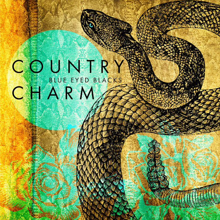 Country Charm cover art