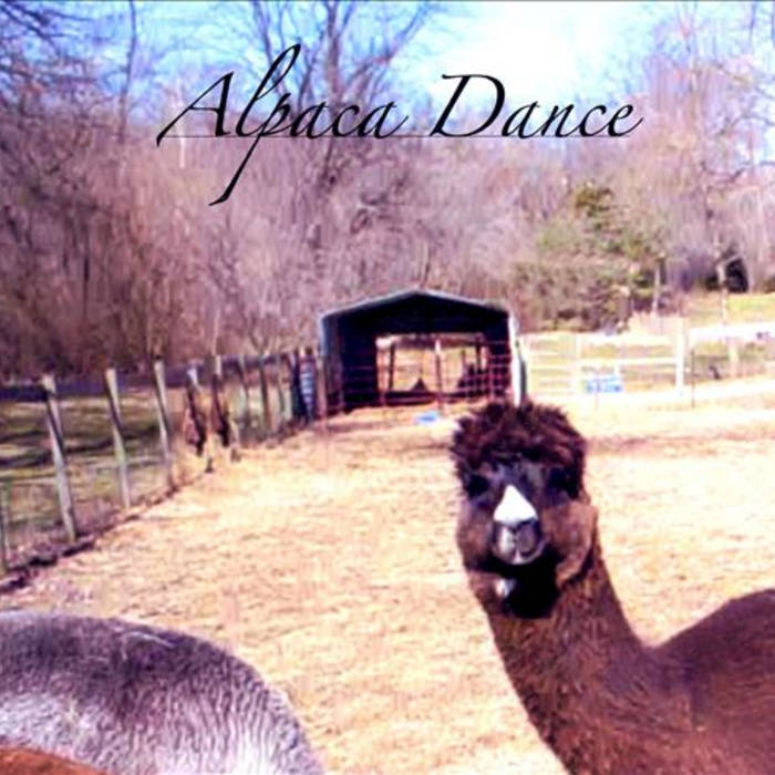 Alpaca Dance cover art