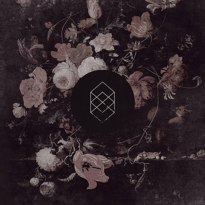 Monochrome Noise Love cover art