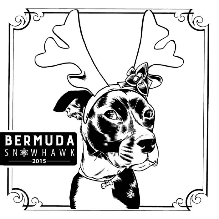 Bermuda Snohawk 2015 cover art