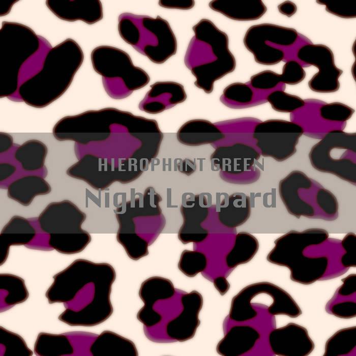 Night Leopard cover art