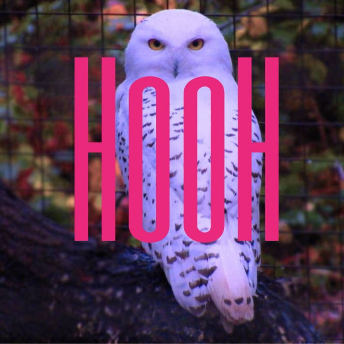 Hooh (Original Mix) cover art
