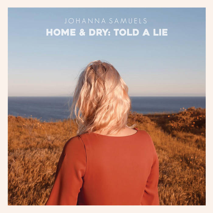 Home & Dry: Told a Lie cover art