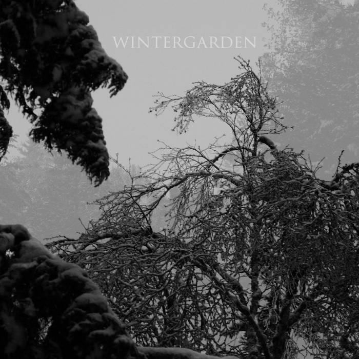 Wintergarden cover art