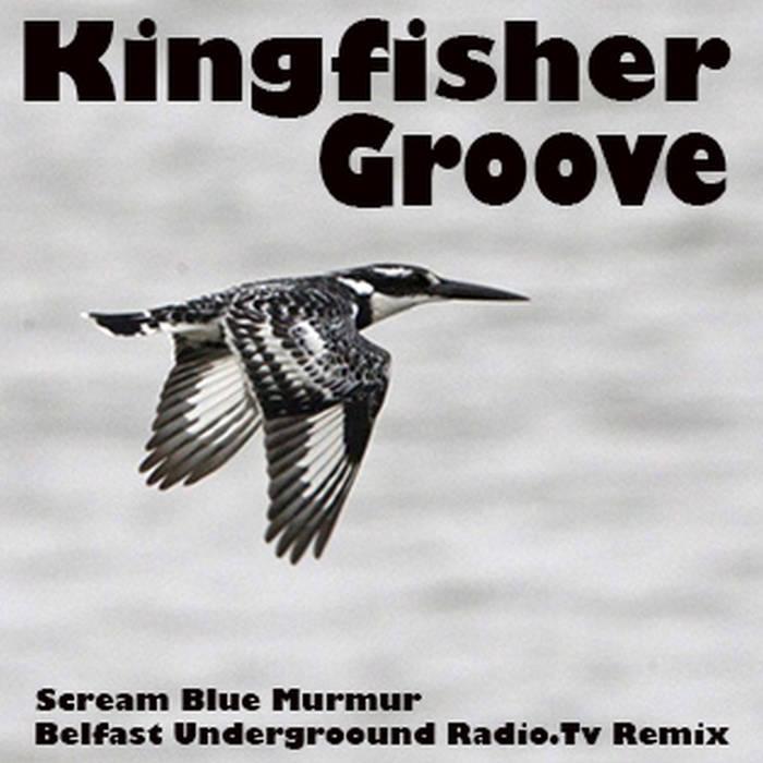Kingfisher Groove - Belfast Underground Radio.TV Remix cover art