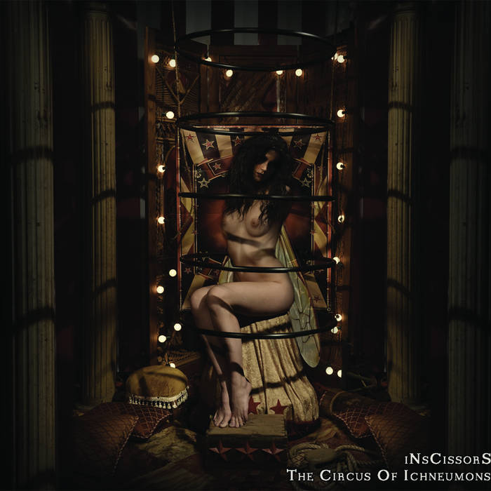 The Circus Of Ichneumons cover art