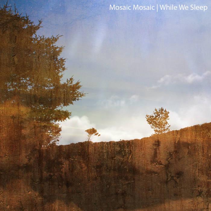 While We Sleep (2010) cover art