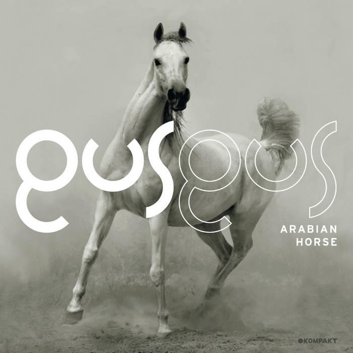 Arabian Horse cover art