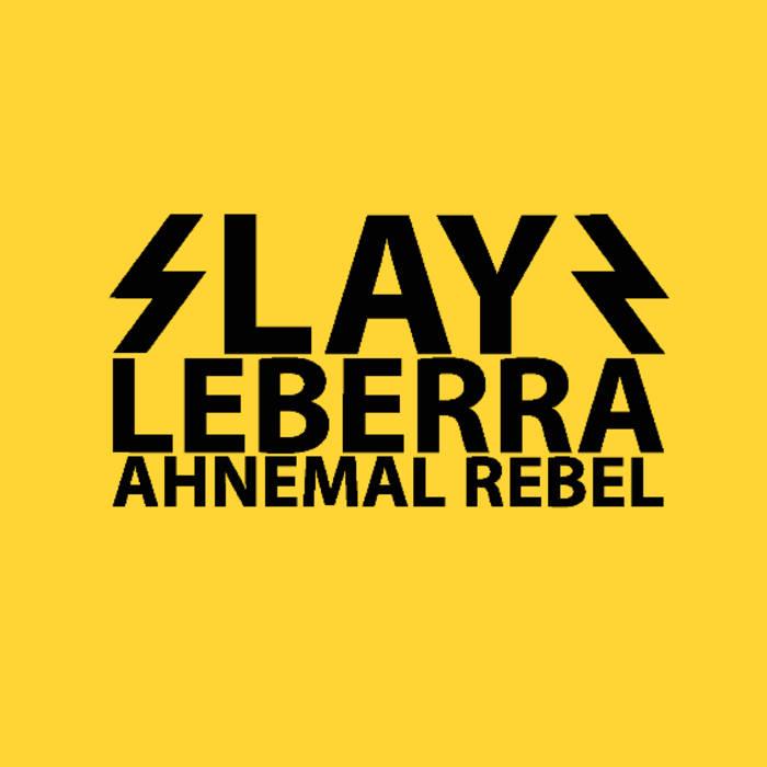 SlayR cover art