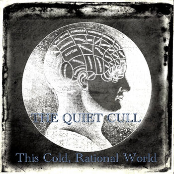 This Cold, Rational World by The Quiet Cull