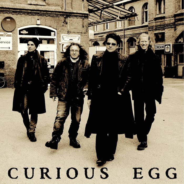 Curious Egg cover art