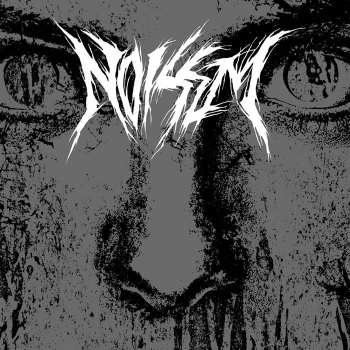 NOISEM Consumed cover art