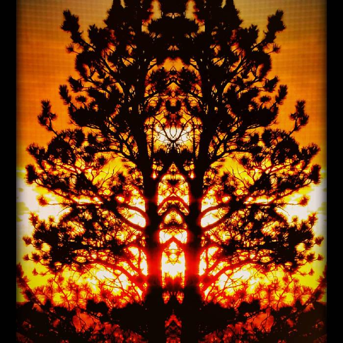 Where Autumns Fall cover art