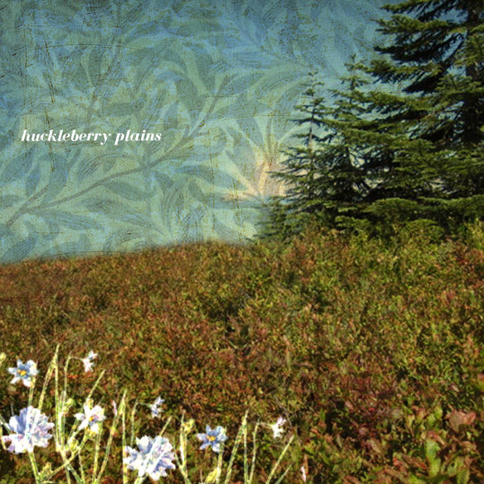 Huckleberry Plains cover art