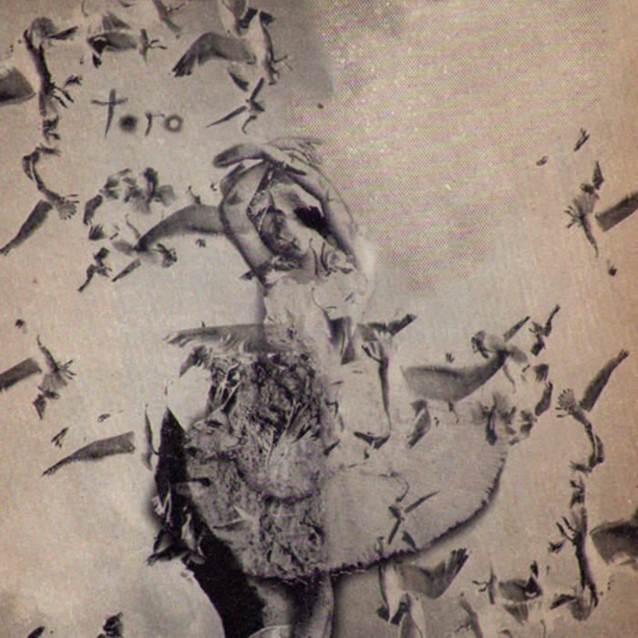 Toro cover art