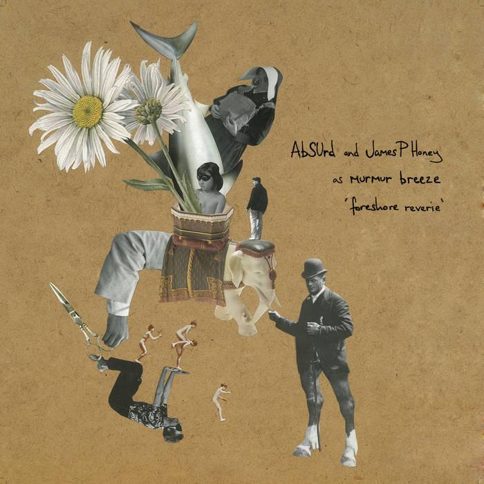 Foreshore Reverie [vinyl edition] cover art