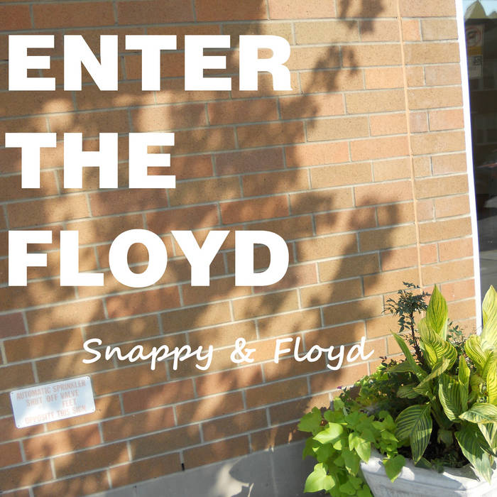 Enter the Floyd cover art