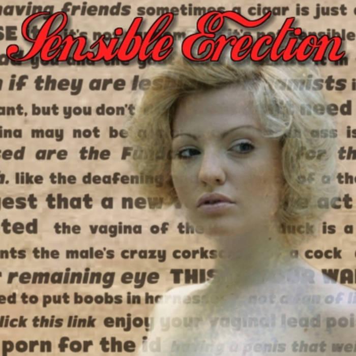 Sensible Erection cover art