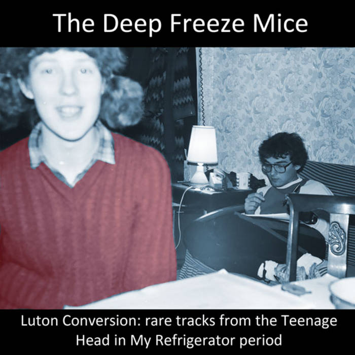 Luton Conversion: rare tracks from the Teenage Head in My Refrigerator period cover art