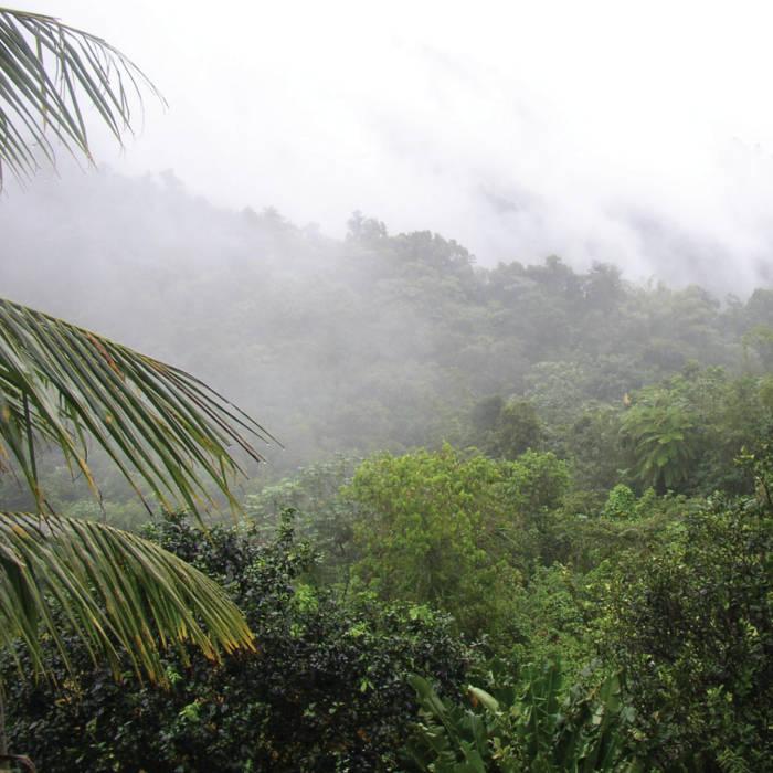 El Yunque cover art