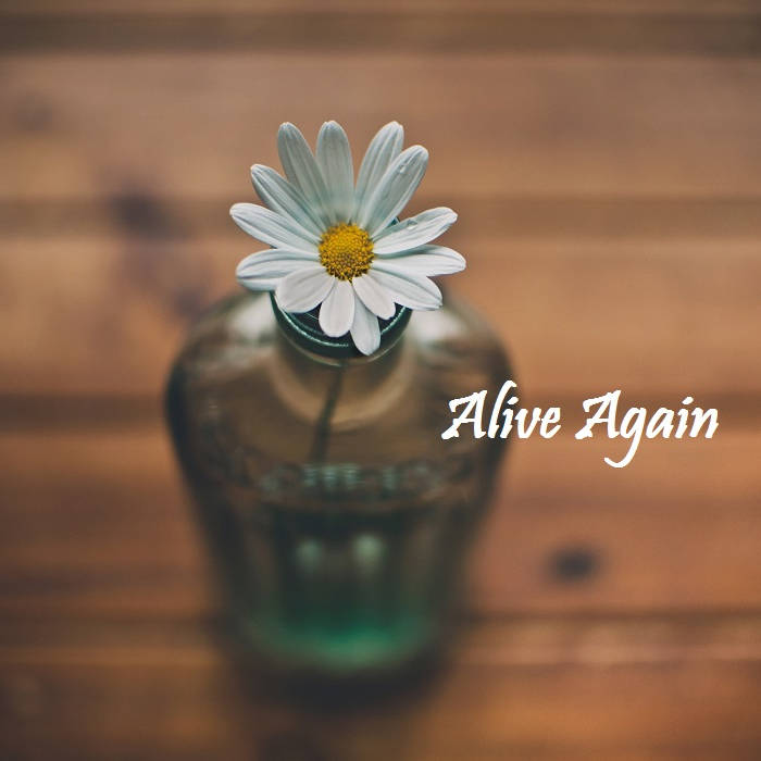 Alive Again cover art