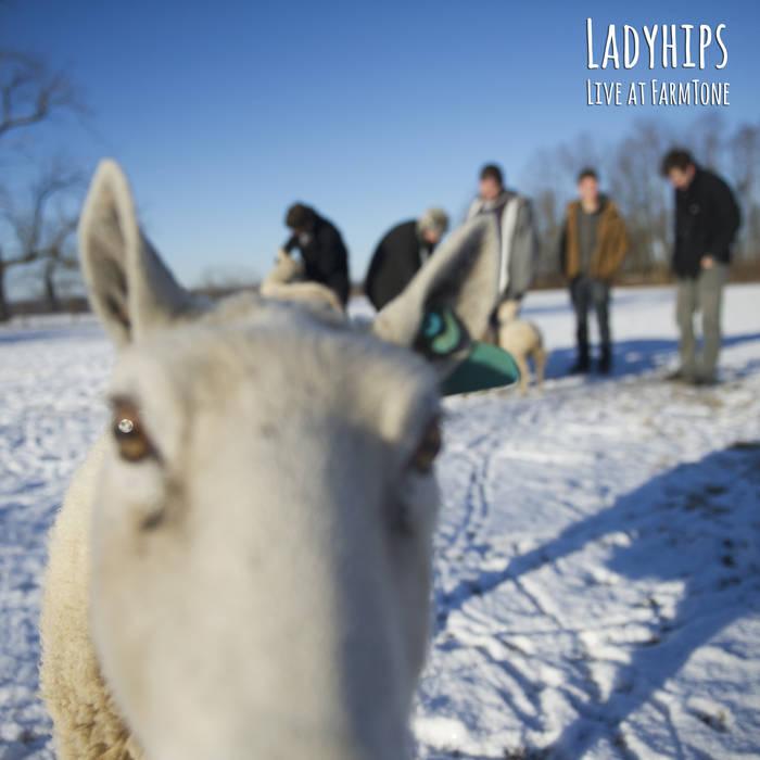 Live at Farmtone cover art