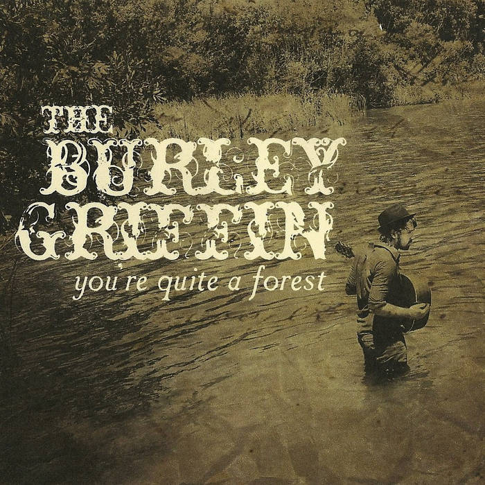 You're Quite A Forest cover art