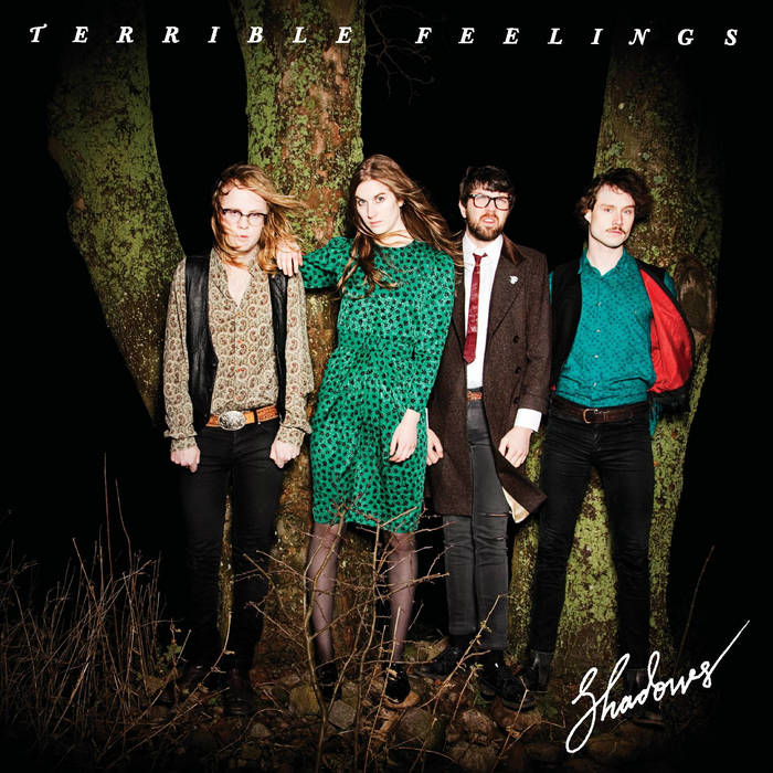 Terrible Feelings: Shadows lp cover art