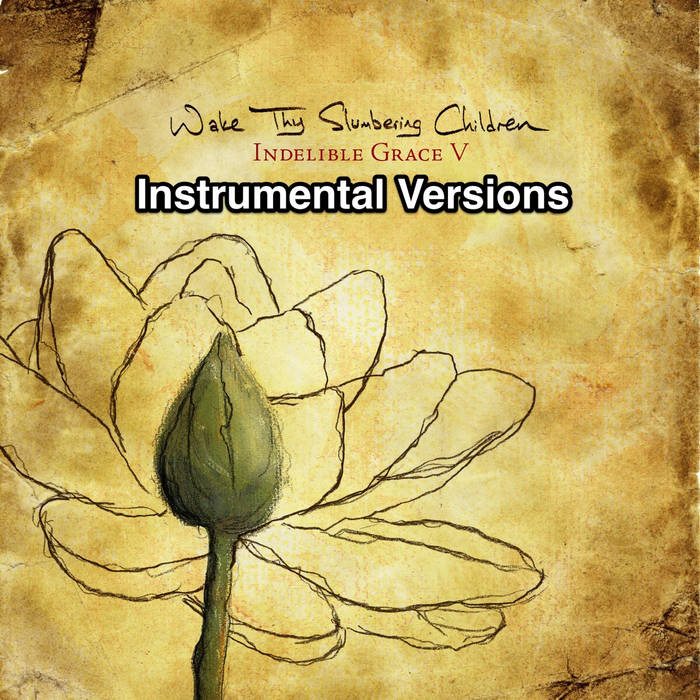 Wake Thy Slumbering Children: Indelible Grace V (Instrumental Versions) cover art