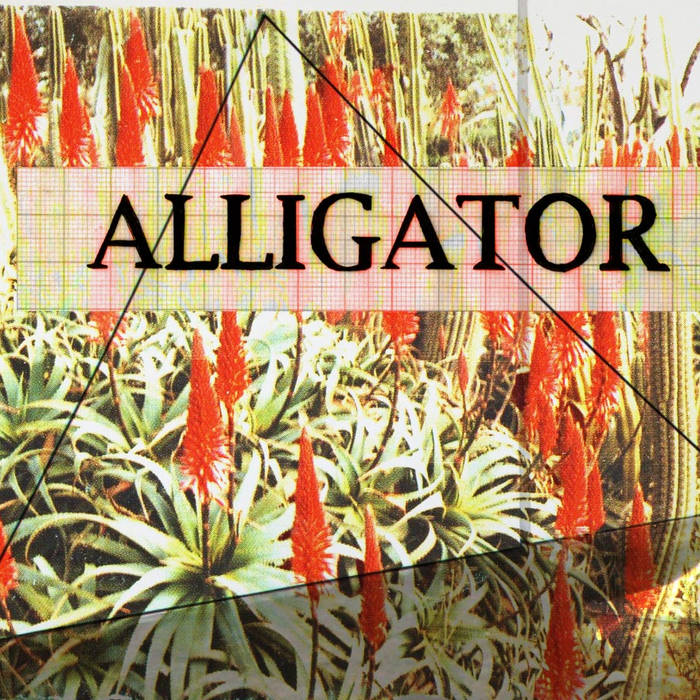 ALLIGATOR cover art