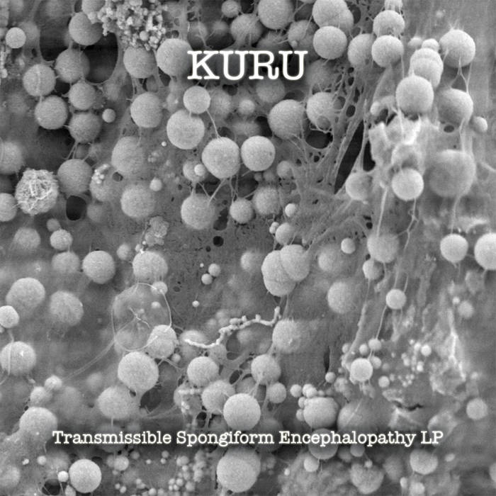"""Transmissible Spongiform Encephalopathy"" LP - Kuru (CD SOLD OUT) cover art"
