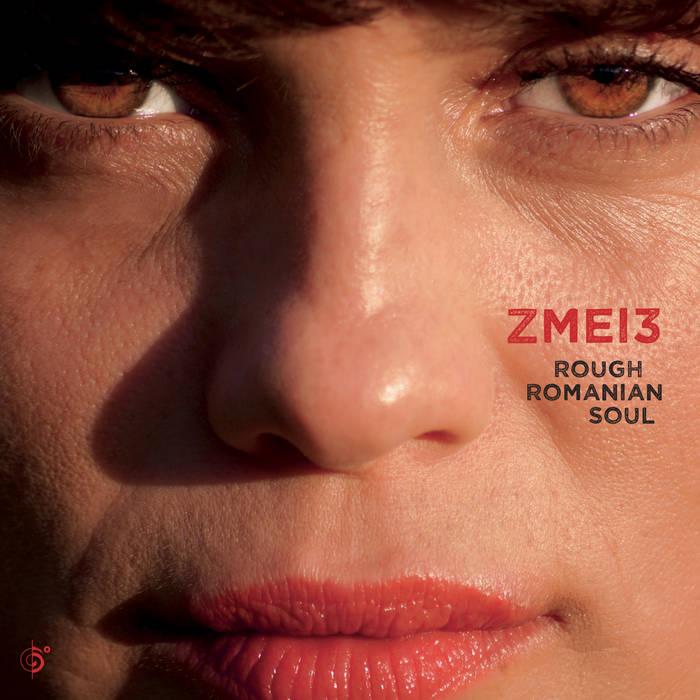 Rough Romanian Soul cover art