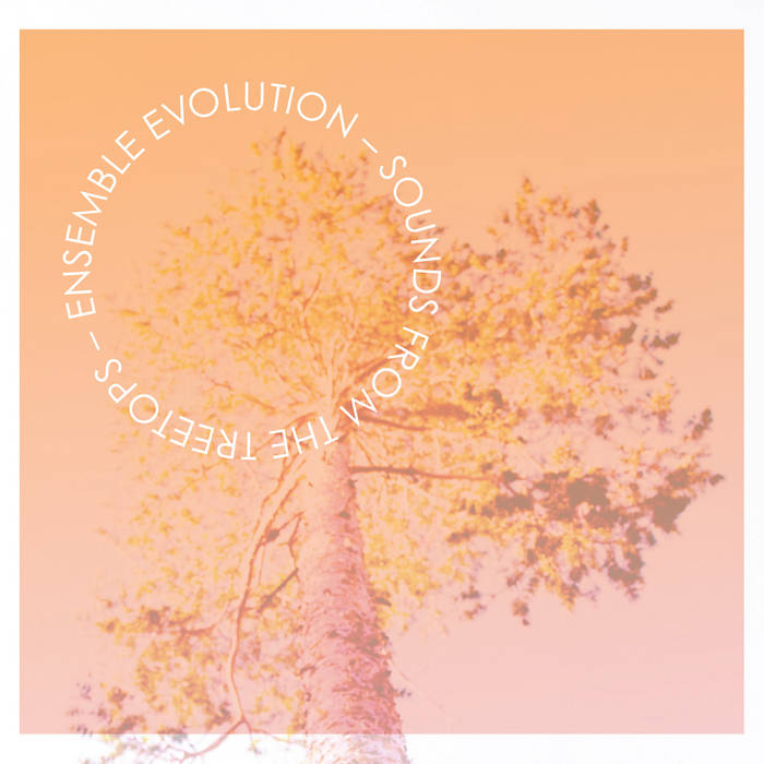 Sounds from the Treetops cover art