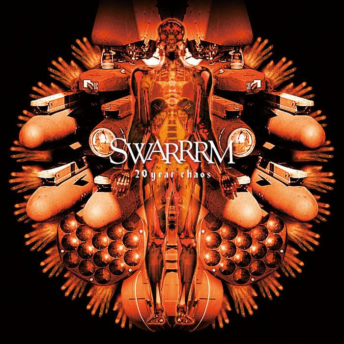 20year chaos / SWARRRM cover art