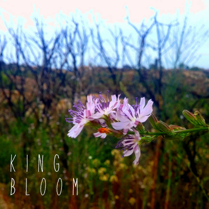 King Bloom - EP cover art