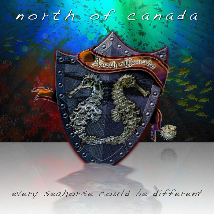 Every Seahorse Could Be Different cover art