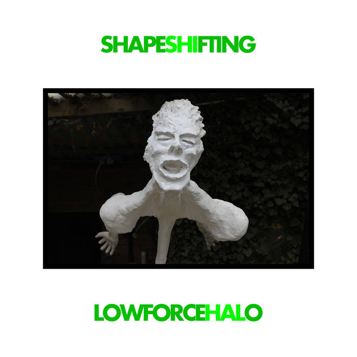 Shapeshifting cover art