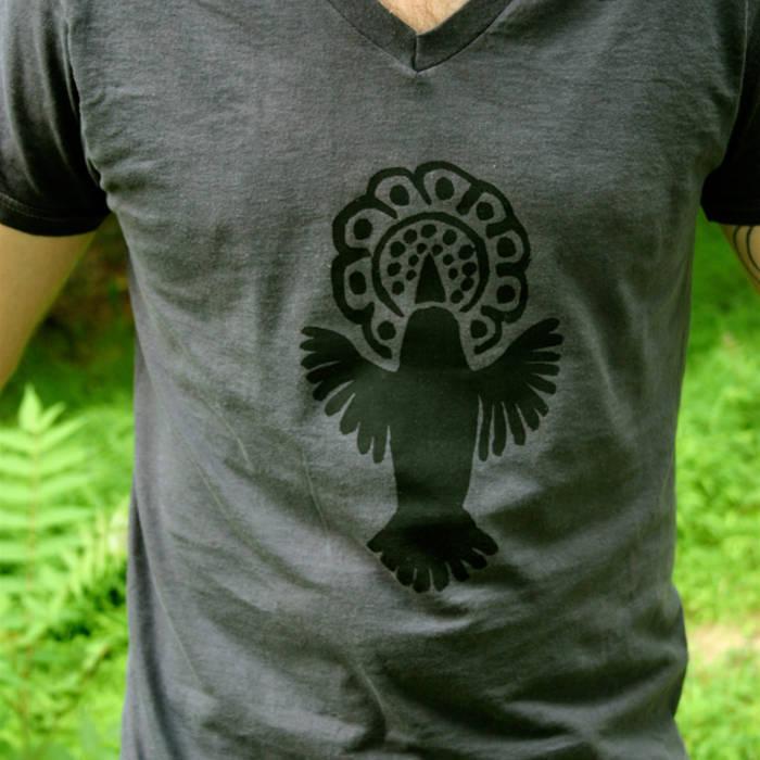 Hummingbird Shirt cover art