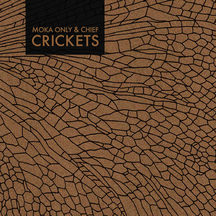 MOKA ONLY & CHIEF - Crickets cover art