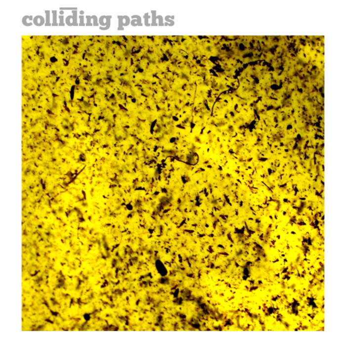 Colliding paths cover art