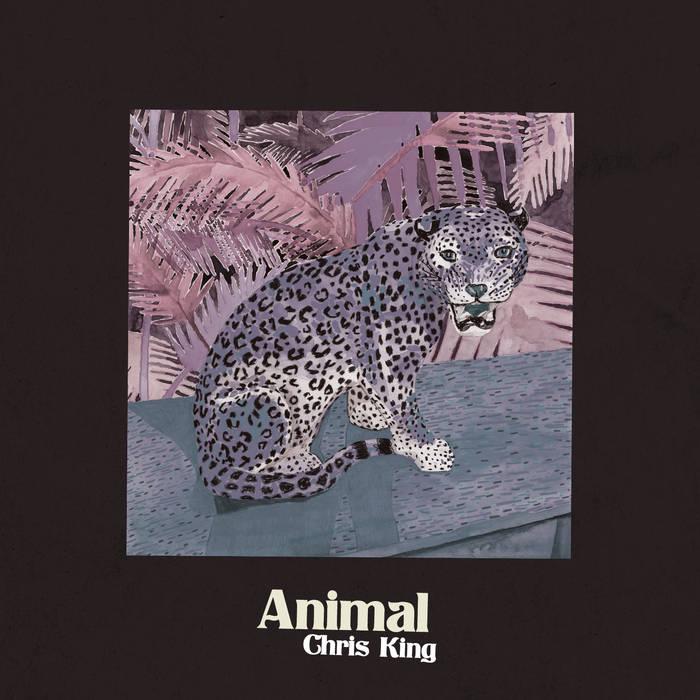 Animal cover art