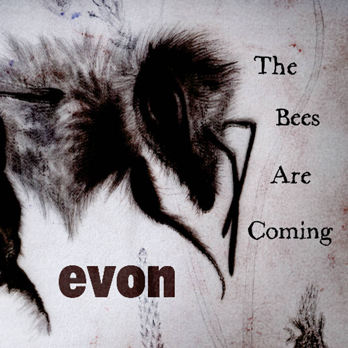 The Bees Are Coming cover art
