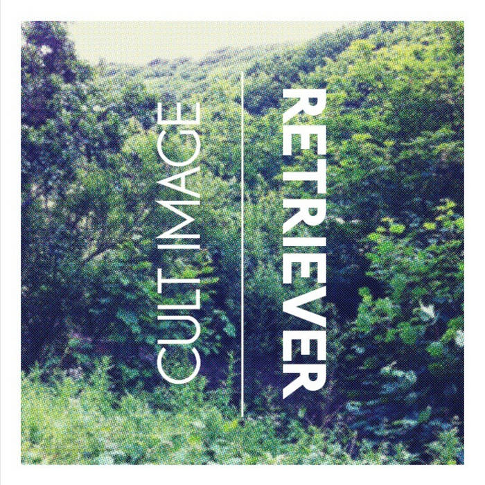 "RETRIEVER/Cult Image 7"" Split Single cover art"