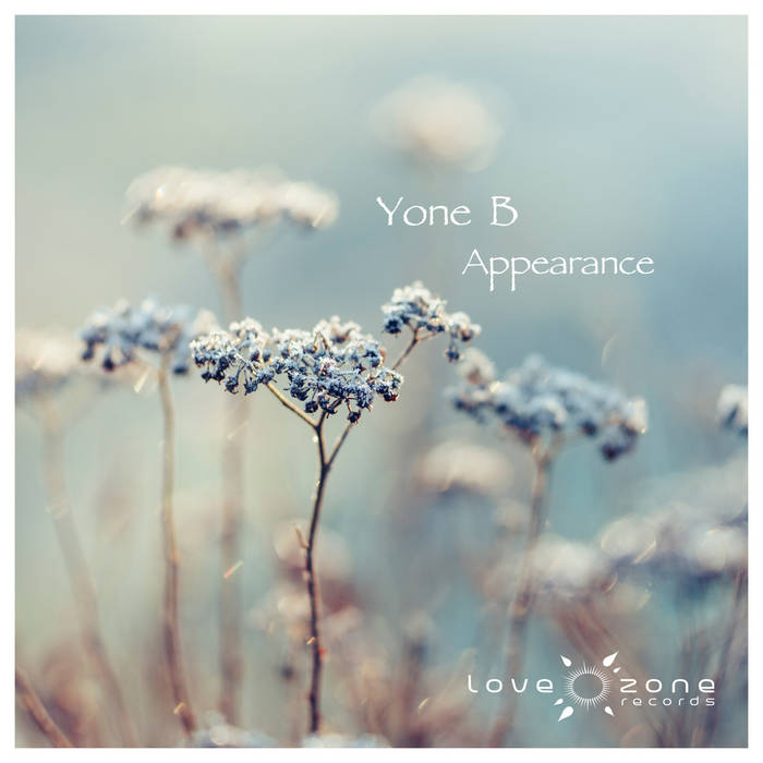 Appearance cover art