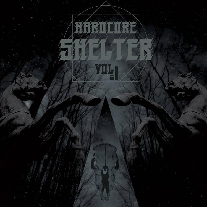 Hardcore Shelter #1 cover art