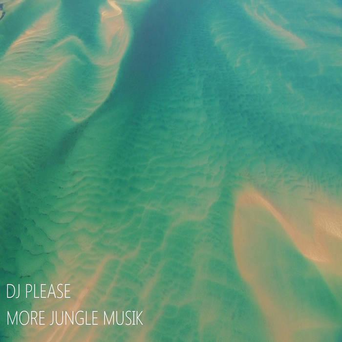 More Jungle Musik cover art
