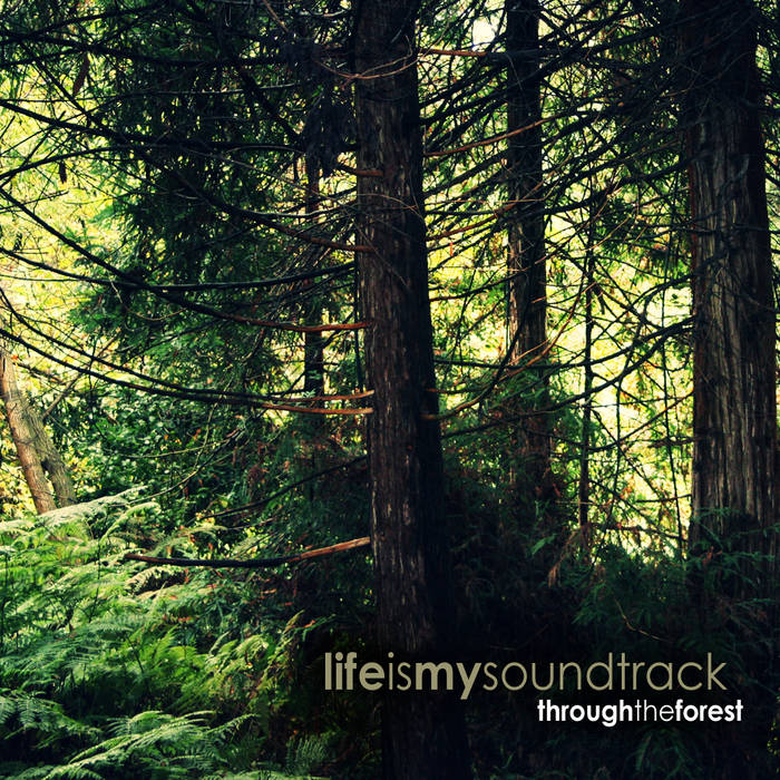 Through The Forest cover art